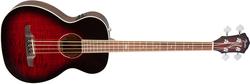 Fender T-Bucket Bass FLM
